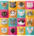 Set of flat popular breeds of cats icons vector image vector image