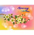 Spring all wakes up flowers sakura
