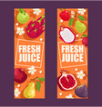 tropical fruits set of banners vector image vector image