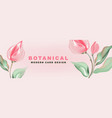 tulips romantic nature advertising promotion vector image