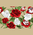 beautiful white outline and colered red roses vector image vector image
