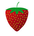 flat strawberry fruit in eps10 vector image