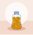 fruits mason jar vector image vector image