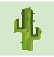 The green cactus in a desert isolated on white vector image vector image