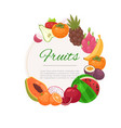 tropical fruits circle background cartoon vector image vector image