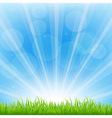 Green Background With Sunburst vector image