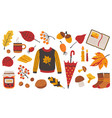 autumn set cozy hand drawn decorative elements vector image