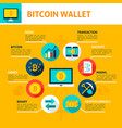 bitcoin wallet infographics vector image vector image
