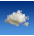 Cloud in sky vector image vector image