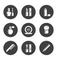 decorative cosmetic icon set vector image