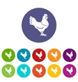 Hen set icons vector image