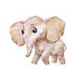 little cute elephant watercolor vector image vector image