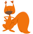 red squirrel animal character vector image vector image
