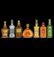 set alcohol bottles vector image vector image