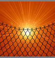 sun and wire barb freedom concept peace day vector image vector image