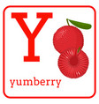 an alphabet with cute fruits letter y yumberry vector image vector image
