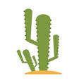 cactus plant icon image vector image vector image