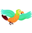 cartoon animal parrot vector image vector image