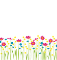 meadow with colorful flowers cartoon vector image