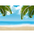 Palm leaves on beach vector image vector image
