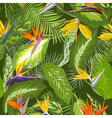 Seamless Pattern Tropical Palm Leaves Background vector image vector image