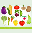 A large set of fresh vegetables Easily editable