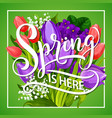 spring is here greeting poster with flower bouquet vector image