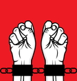 fist in chain1 vector image