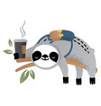 cute sloth bear animal with coffee vector image