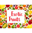 exotic and tropical fruit frame for food design vector image vector image