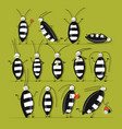 funny cockroaches set for your design vector image vector image