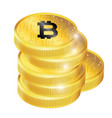 golden bitcoin cryptocurrency image vector image vector image