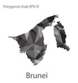 isolated icon brunei map polygonal geometric vector image vector image