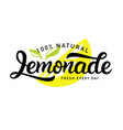 lemonade logo badge vector image