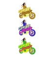 Indian biker on a motorbike Colourful vector image
