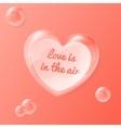 shiny bubble heart with vector image