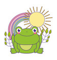 cute toad with rainbow character vector image