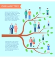 Flat Family Tree Poster vector image vector image