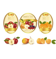 gold labels and fruits vector image