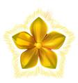 golden metal pattern flower five petal vector image