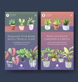 instagram template design with summer plant vector image vector image