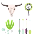 Longhorn cow skull head vector image