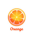 sweet fruit orange on transparent background vector image vector image