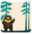Grizzly bear vector image