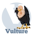 ABC Cartoon Vulture2 vector image vector image