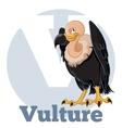 ABC Cartoon Vulture2 vector image