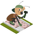 ant worker laying pavement tiles cartoon vector image