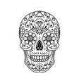 decorative painted mexican sugar skull on white vector image vector image