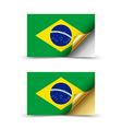 flag brazil vector image vector image