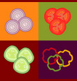 fresh vegetables salad ingredients vector image